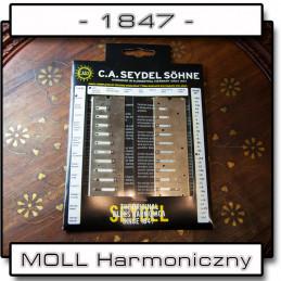 Zestaw Seydel Session Steel - LIFTING